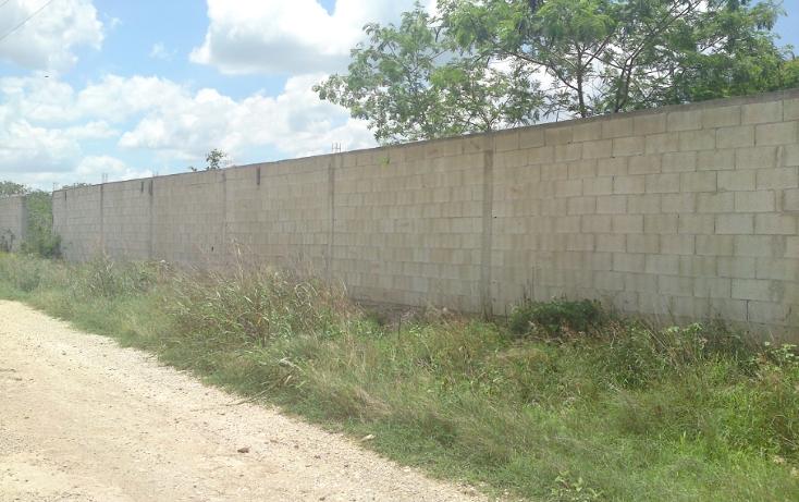 Foto de terreno habitacional en venta en  , chenku, m?rida, yucat?n, 1282947 No. 01