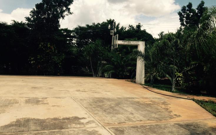Foto de casa en venta en  , chichi suárez, mérida, yucatán, 1232771 No. 06