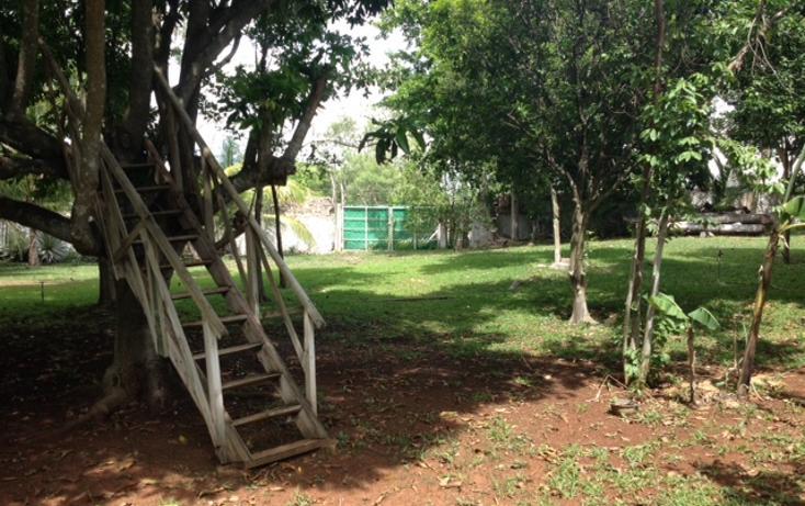 Foto de casa en venta en  , chichi suárez, mérida, yucatán, 1232771 No. 12