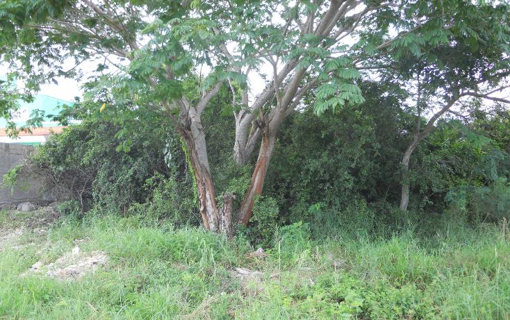 Foto de terreno habitacional en venta en  , chichi su?rez, m?rida, yucat?n, 1296733 No. 02