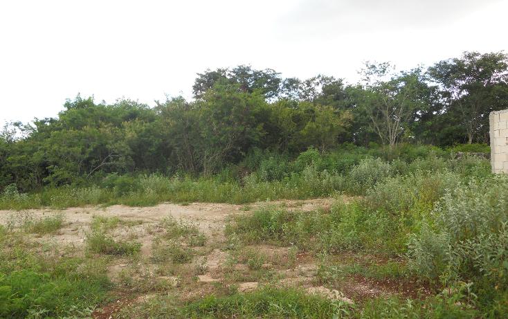 Foto de terreno habitacional en venta en  , chichi su?rez, m?rida, yucat?n, 1296733 No. 03