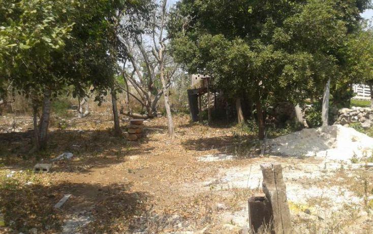 Foto de terreno habitacional en venta en, chichi suárez, mérida, yucatán, 1323599 no 04