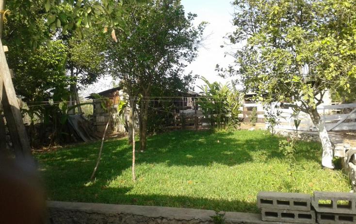 Foto de casa en venta en  , chichi suárez, mérida, yucatán, 1324583 No. 05