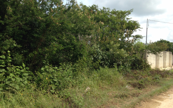 Foto de terreno habitacional en venta en  , chichi suárez, mérida, yucatán, 1410795 No. 01