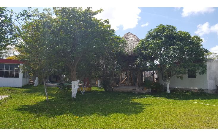 Foto de casa en venta en  , chichi suárez, mérida, yucatán, 1895992 No. 18