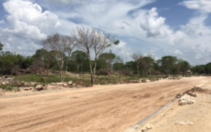 Foto de terreno habitacional en venta en  , chichi suárez, mérida, yucatán, 1978994 No. 04