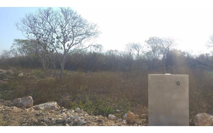 Foto de terreno habitacional en venta en, chichi suárez, mérida, yucatán, 1978994 no 06
