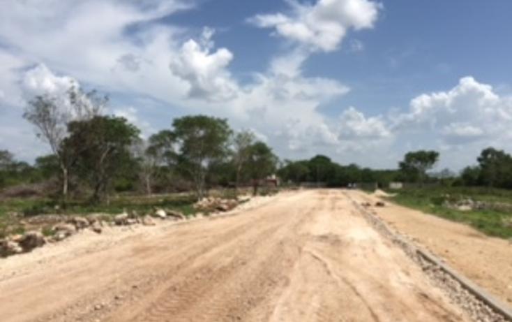 Foto de terreno habitacional en venta en  , chichi suárez, mérida, yucatán, 2035916 No. 03