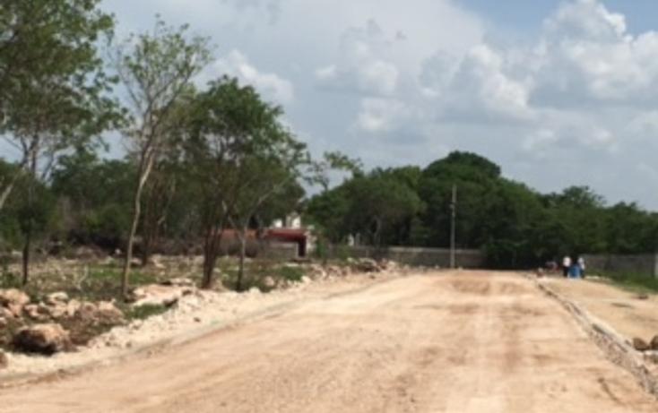 Foto de terreno habitacional en venta en  , chichi suárez, mérida, yucatán, 2035916 No. 04