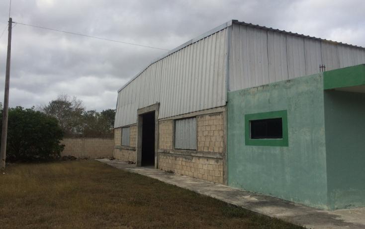 Foto de terreno habitacional en venta en  , chichi su?rez, m?rida, yucat?n, 946507 No. 07