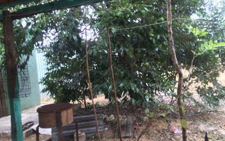 Foto de terreno habitacional en venta en  , chichi su?rez, m?rida, yucat?n, 946507 No. 33
