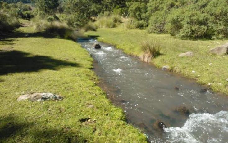 Foto de rancho en venta en chichicaxtla 2, chichicaxtla, aquixtla, puebla, 503485 No. 02