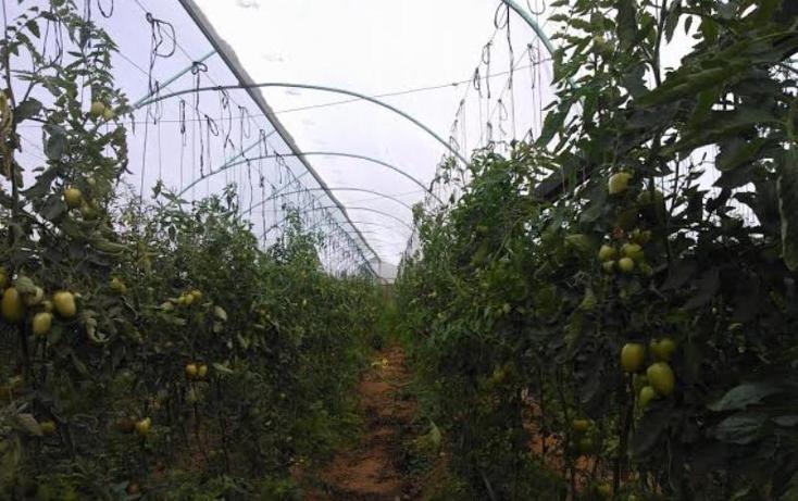 Foto de rancho en venta en chichicaxtla 2, chichicaxtla, aquixtla, puebla, 503485 No. 05