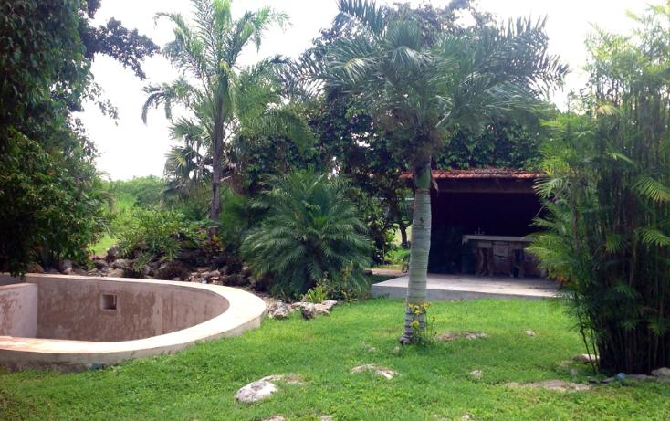 Foto de rancho en venta en  , chicxulub, chicxulub pueblo, yucatán, 1072615 No. 16
