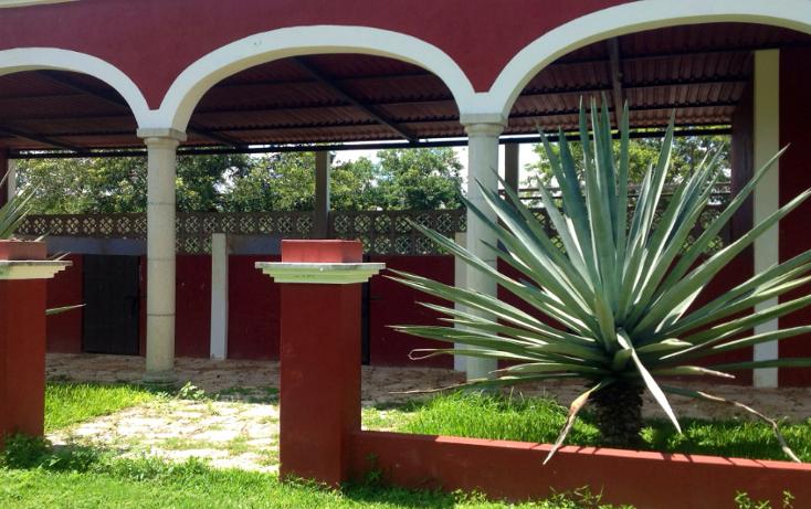 Foto de rancho en venta en  , chicxulub, chicxulub pueblo, yucatán, 1072615 No. 19