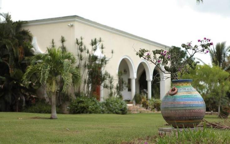 Foto de terreno habitacional en venta en  , chicxulub, chicxulub pueblo, yucatán, 1143883 No. 08