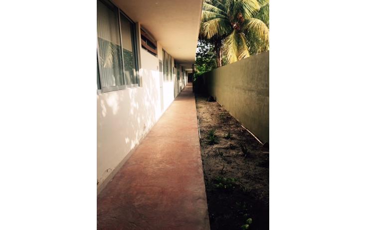 Foto de departamento en venta en  , chicxulub, chicxulub pueblo, yucatán, 1162427 No. 02