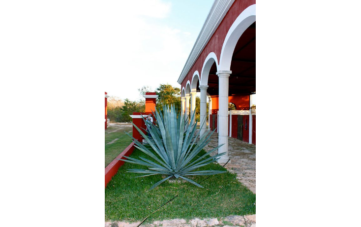 Foto de rancho en venta en  , chicxulub, chicxulub pueblo, yucatán, 1263273 No. 01