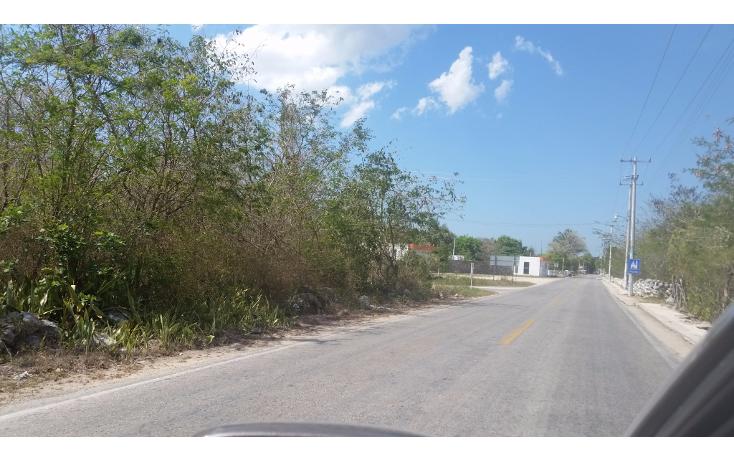 Foto de terreno habitacional en venta en  , chicxulub, chicxulub pueblo, yucatán, 1302355 No. 01