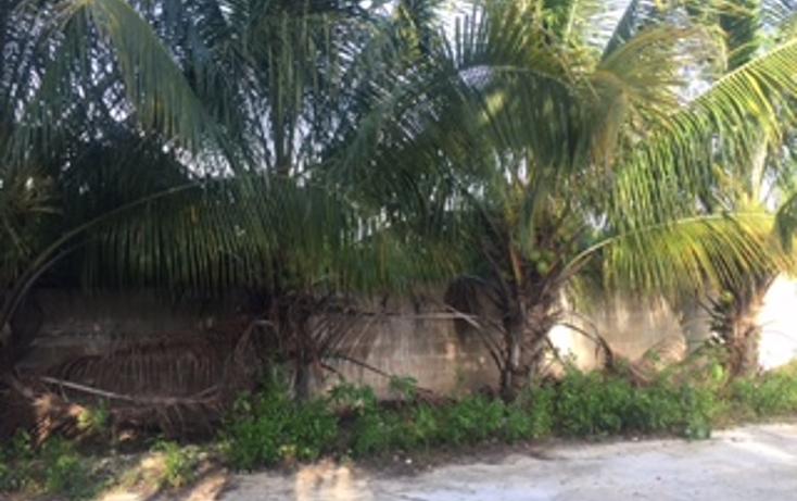 Foto de terreno habitacional en venta en  , chicxulub, chicxulub pueblo, yucatán, 1327767 No. 01