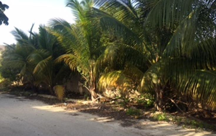 Foto de terreno habitacional en venta en  , chicxulub, chicxulub pueblo, yucatán, 1327767 No. 02