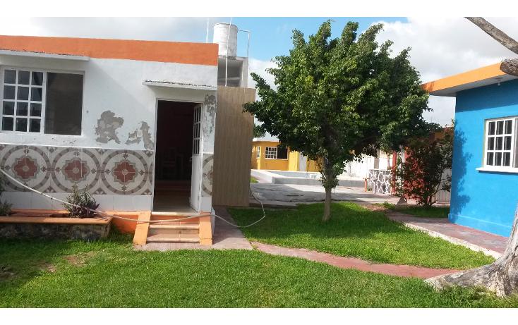 Foto de rancho en renta en  , chicxulub, chicxulub pueblo, yucatán, 1489135 No. 03