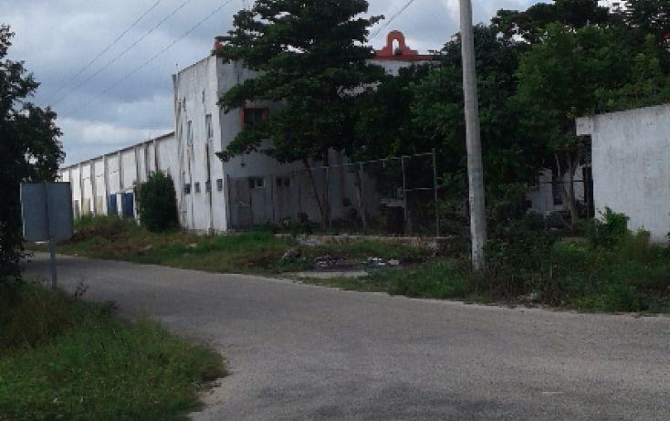 Foto de terreno habitacional en venta en, chicxulub, chicxulub pueblo, yucatán, 1559000 no 03