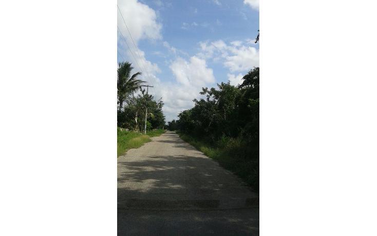Foto de terreno habitacional en venta en  , chicxulub, chicxulub pueblo, yucatán, 1577772 No. 01
