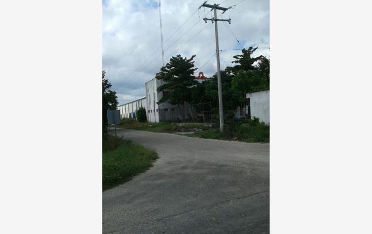 Foto de terreno habitacional en venta en  , chicxulub, chicxulub pueblo, yucatán, 1761172 No. 02