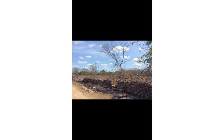 Foto de terreno habitacional en venta en  , chicxulub, chicxulub pueblo, yucatán, 1790068 No. 01