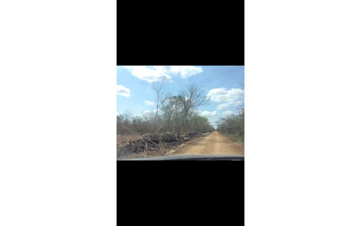 Foto de terreno habitacional en venta en  , chicxulub, chicxulub pueblo, yucatán, 1790068 No. 02