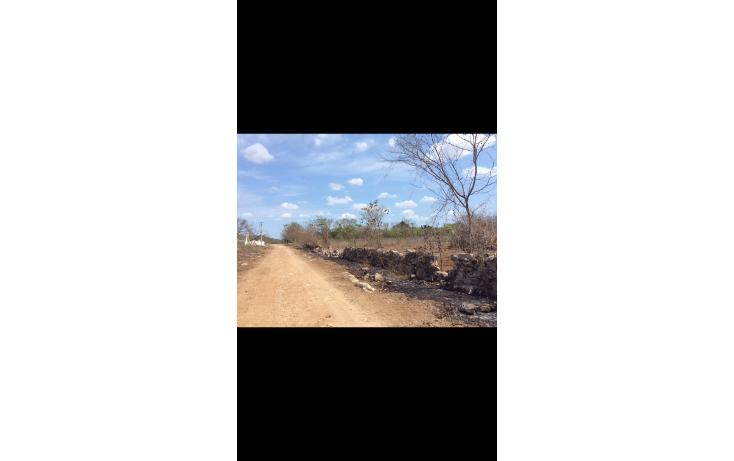 Foto de terreno habitacional en venta en  , chicxulub, chicxulub pueblo, yucatán, 1790068 No. 03