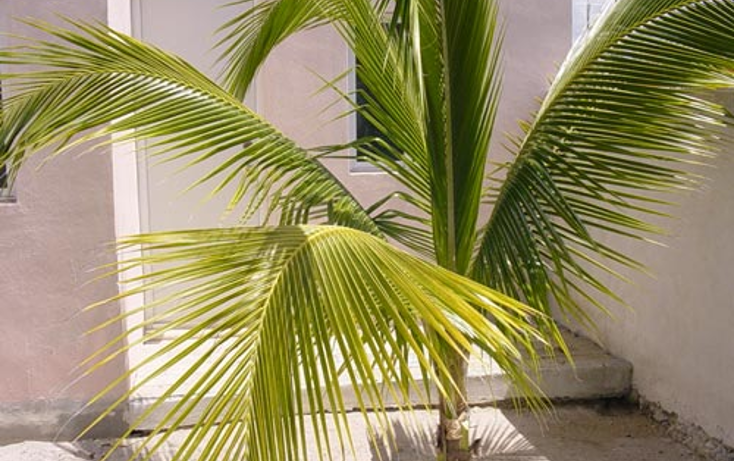 Foto de casa en venta en  , chicxulub puerto, progreso, yucat?n, 1066631 No. 22