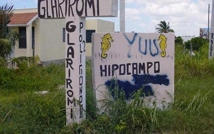 Foto de casa en venta en  , chicxulub puerto, progreso, yucat?n, 1066631 No. 26