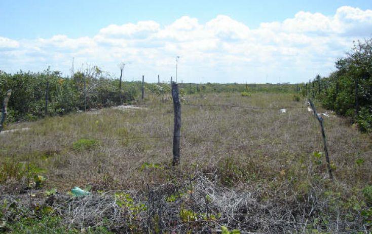 Foto de terreno habitacional en venta en, chicxulub puerto, progreso, yucatán, 1098363 no 02