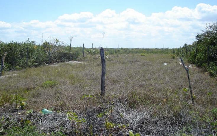 Foto de terreno habitacional en venta en  , chicxulub puerto, progreso, yucatán, 1098363 No. 02