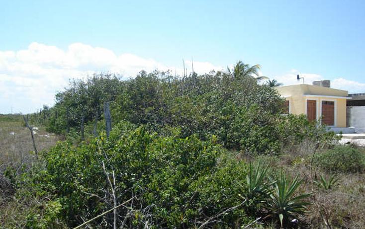Foto de terreno habitacional en venta en  , chicxulub puerto, progreso, yucatán, 1098363 No. 03