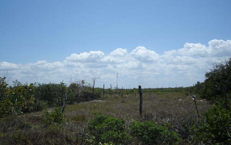 Foto de terreno habitacional en venta en  , chicxulub puerto, progreso, yucatán, 1098363 No. 04