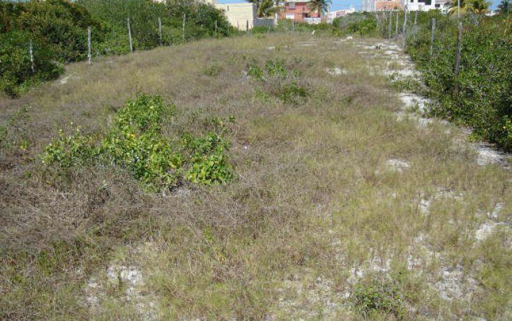 Foto de terreno habitacional en venta en, chicxulub puerto, progreso, yucatán, 1098363 no 06