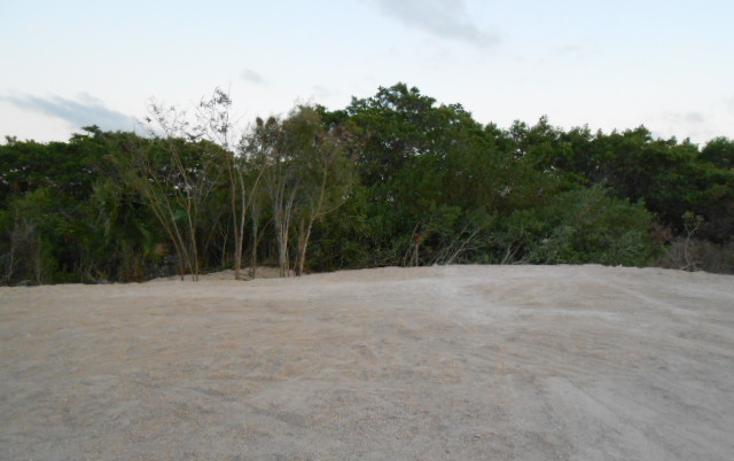 Foto de terreno comercial en renta en  , chicxulub puerto, progreso, yucat?n, 1148743 No. 02