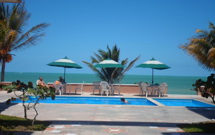 Foto de departamento en venta en  , chicxulub puerto, progreso, yucatán, 1204479 No. 01