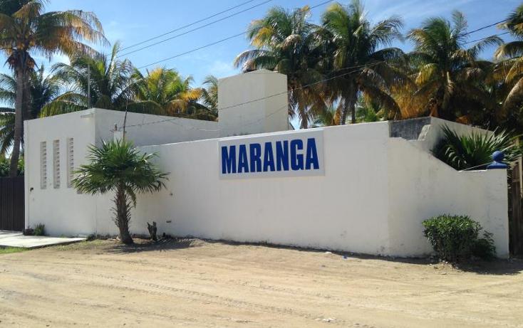Foto de casa en venta en  , chicxulub puerto, progreso, yucat?n, 1412723 No. 20