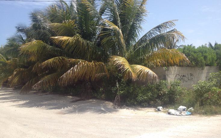Foto de terreno habitacional en venta en  , chicxulub puerto, progreso, yucat?n, 1561946 No. 02