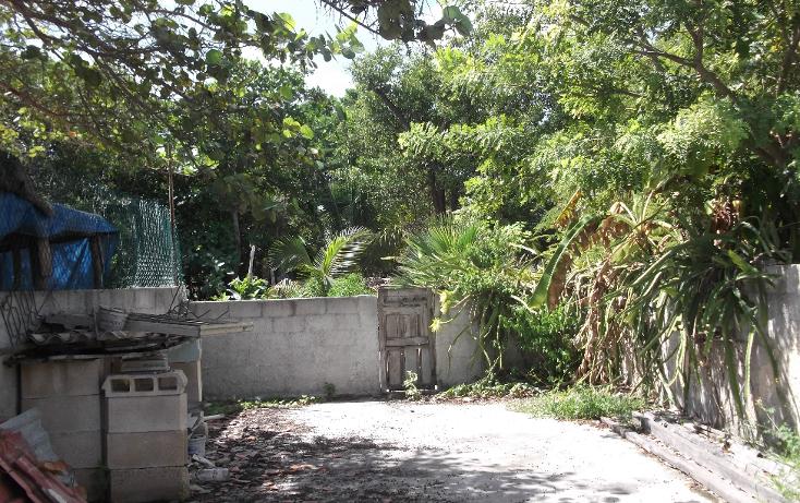 Foto de casa en venta en  , chicxulub puerto, progreso, yucatán, 1772696 No. 10