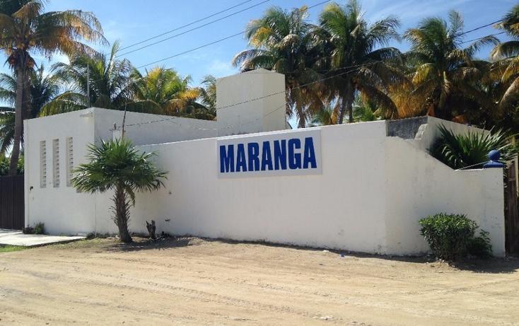 Foto de casa en venta en  , chicxulub puerto, progreso, yucatán, 1860438 No. 20