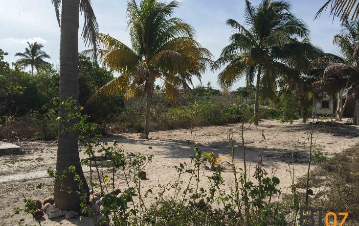 Foto de casa en venta en  , chicxulub puerto, progreso, yucat?n, 2042776 No. 02