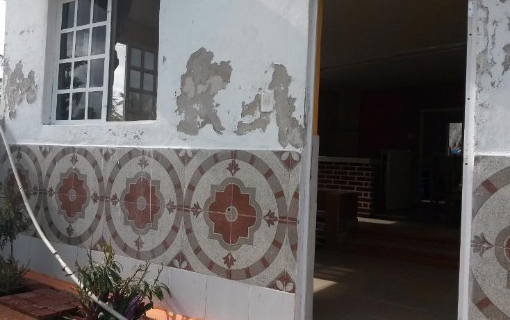 Foto de rancho en venta en  , chicxulub puerto, progreso, yucatán, 3425224 No. 08