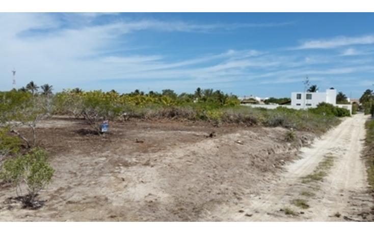 Foto de terreno habitacional en venta en  , chicxulub puerto, progreso, yucatán, 937791 No. 02