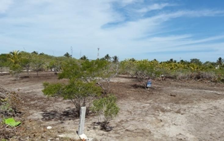Foto de terreno habitacional en venta en, chicxulub puerto, progreso, yucatán, 937791 no 03