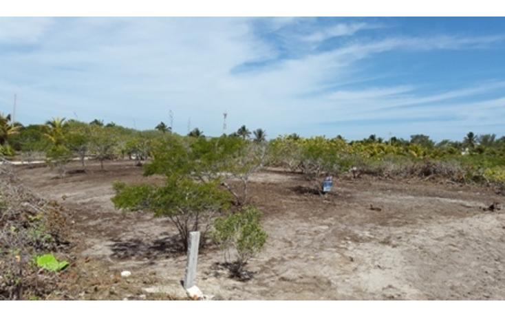 Foto de terreno habitacional en venta en  , chicxulub puerto, progreso, yucatán, 937791 No. 03
